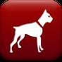 Dog Breed Auto Identify Photo 0.9.14